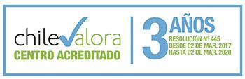 logo_chilevalora_cuadrado